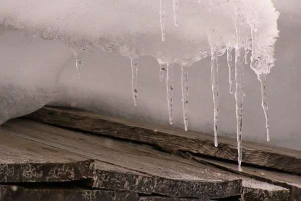 icicles and shingles