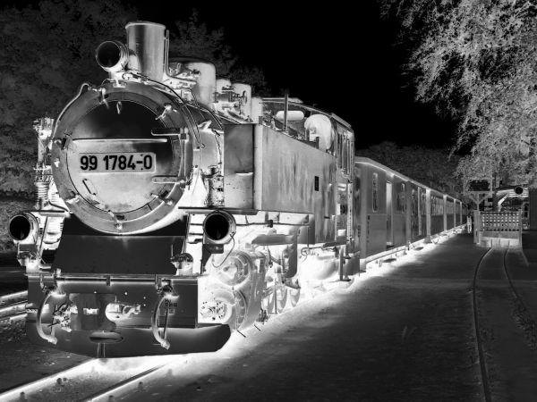 """""""rasender roland"""" - ghost train - rügen"""