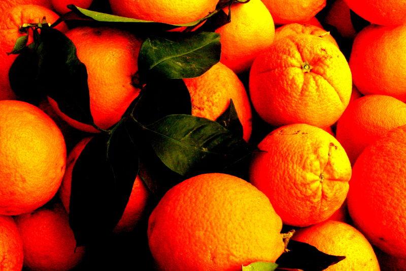 oranges for sale, mallorca