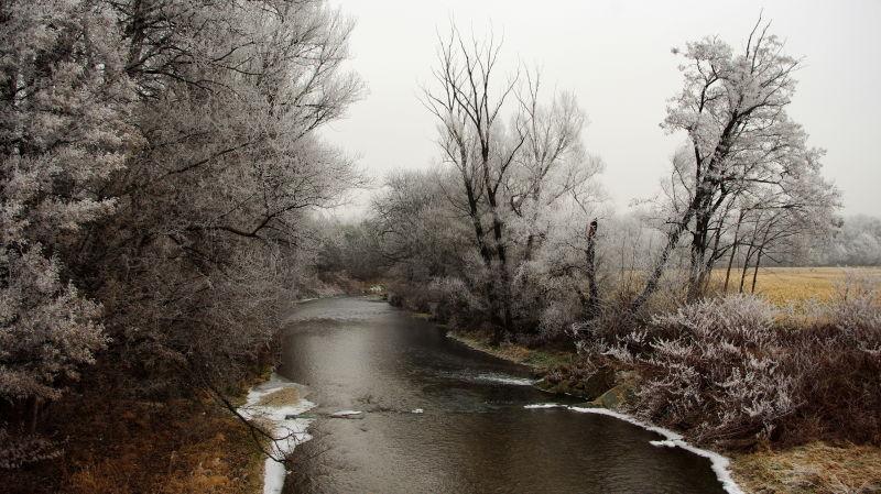 frost along schwechat creek
