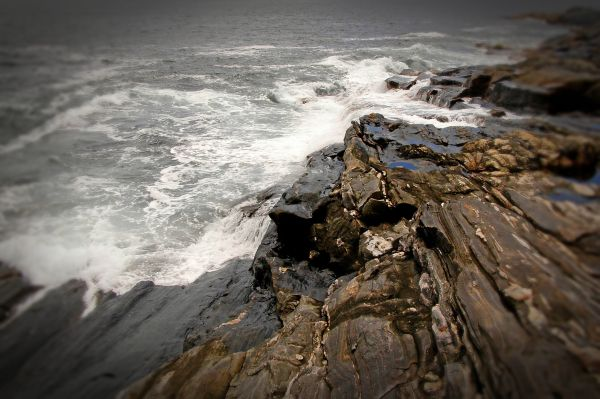 rocky shore at pemaquid point