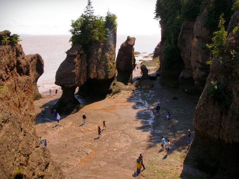 low tide at hopewell rocks provincial park