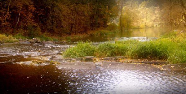 along the thaya river near raabs
