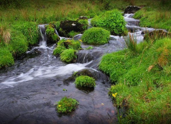 rivulet on the isle of skye