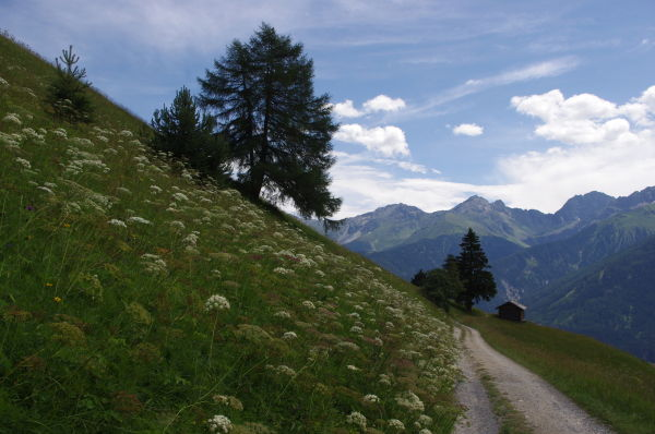 hiking trail above serfaus