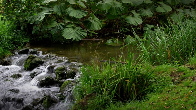 stream on the grounds of leeds castle, england