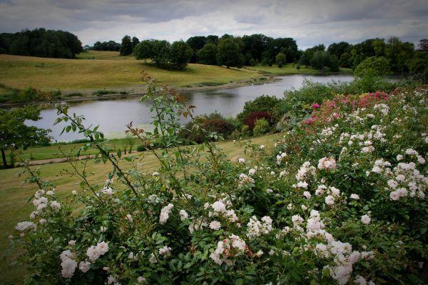 culpeper garden and the great water, leeds castle