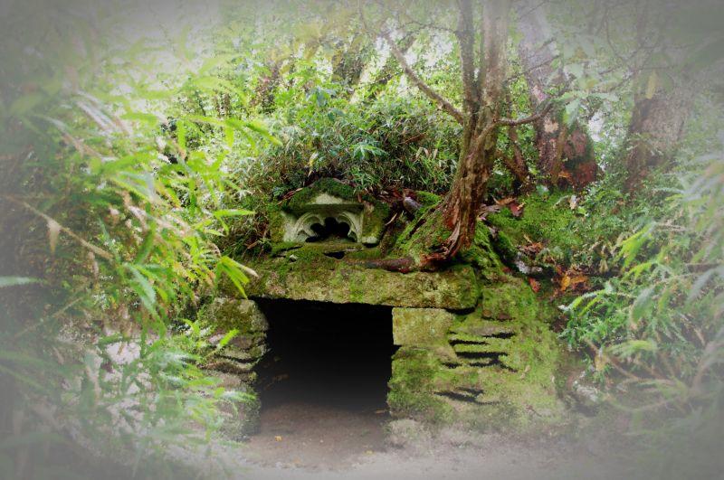 wishing well, heligan gardens, cornwall