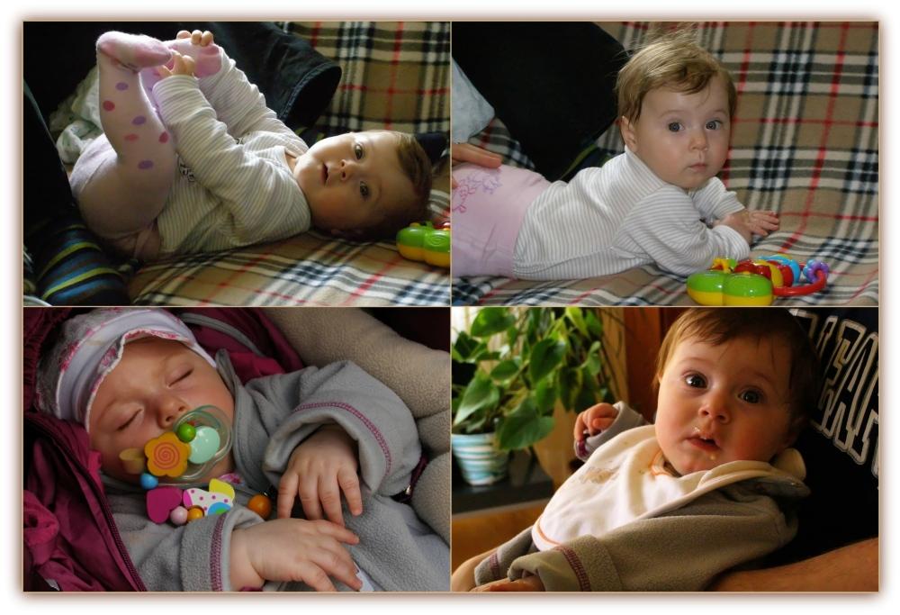 emilia, seven months old