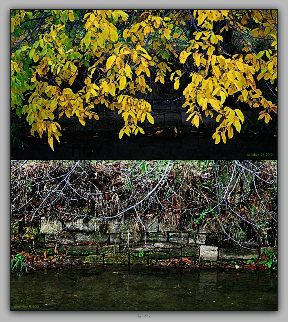 canal project 45b, autumn, walnut tree, hdr, frame