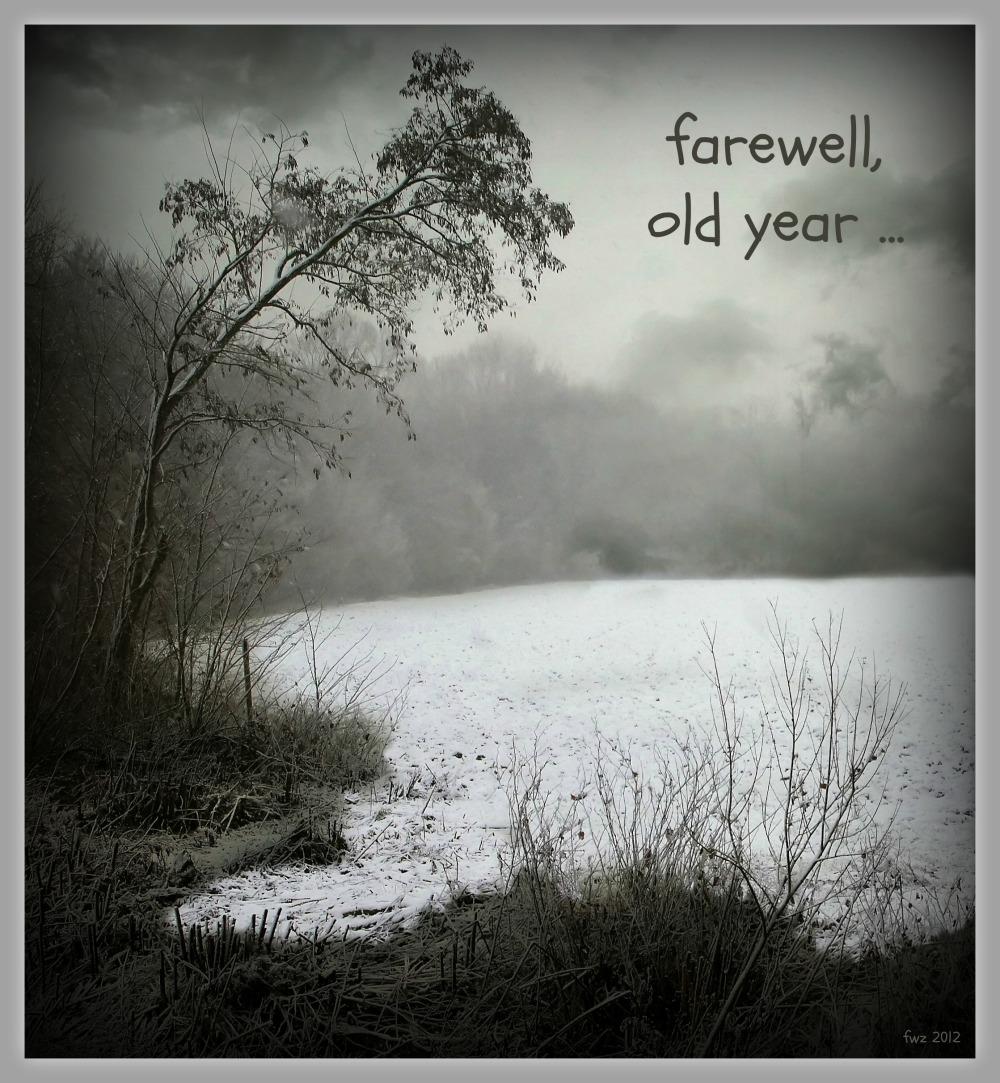 woods, field, snow, good bye 2012, effect