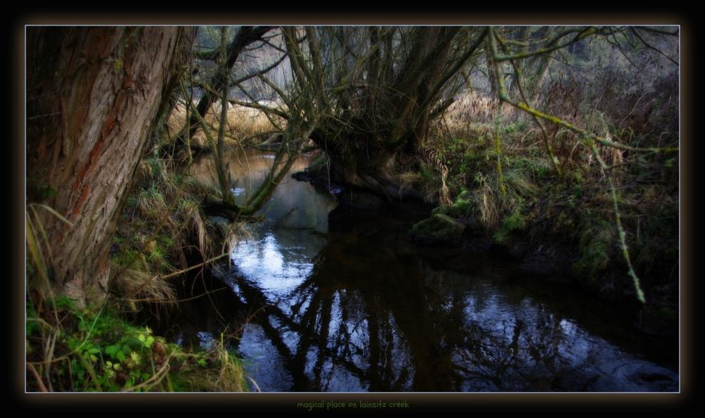 waldviertel, großpertholz, lainsitz, trees, magic