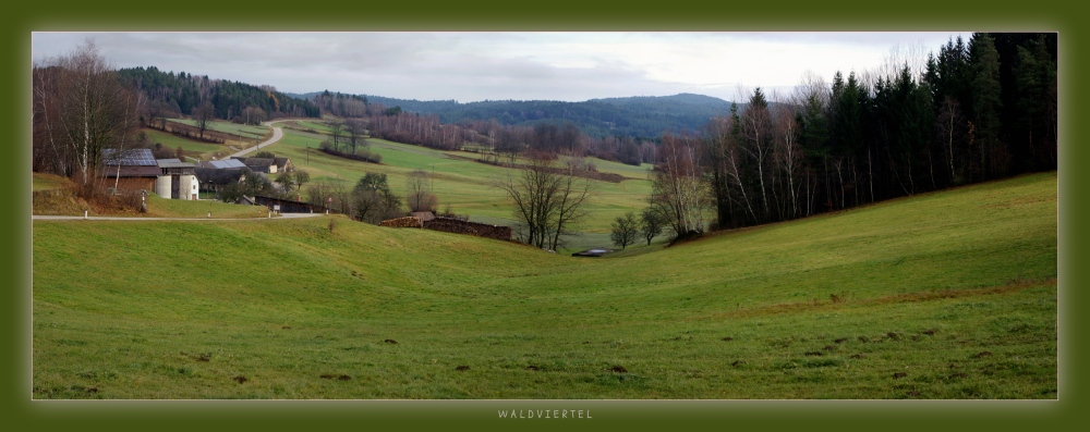 waldviertel, typical countryside, panorama