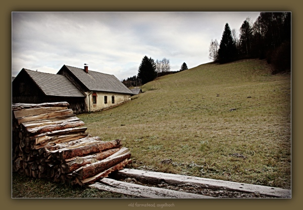 waldviertel, angelbach, farmstead, meadow, wood