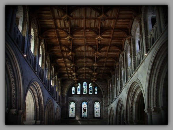 churches, st. david's cathedral, wooden ceiling