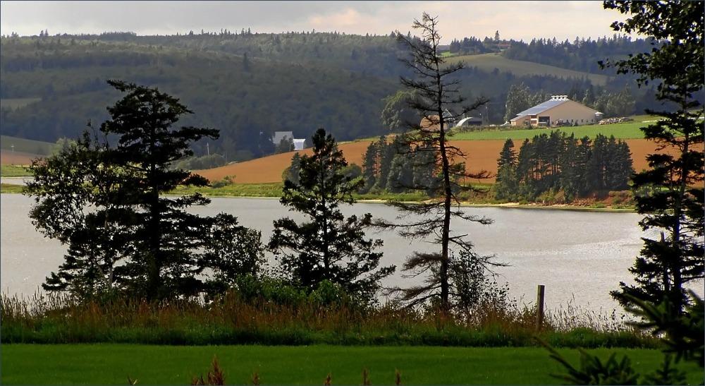 canada, PEI, pond, farm, woods