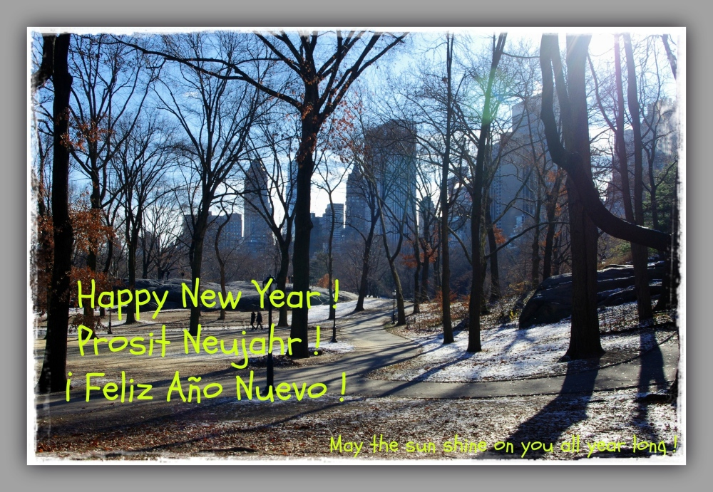 new york city, central park, new year