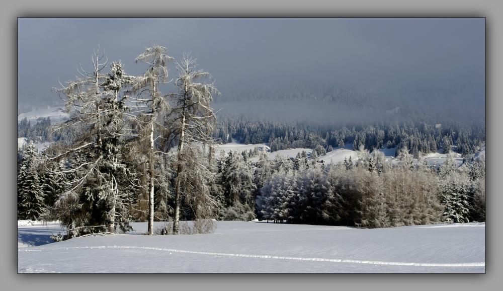 south tyrol, doblach, snow, mist, sunshine