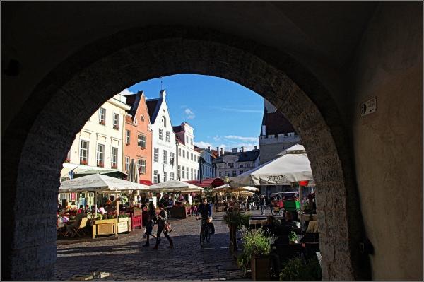 baltic states, estonia, tallinn, town hall square