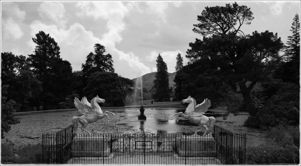 ireland, powerscourt garden, wicklow, bw, park