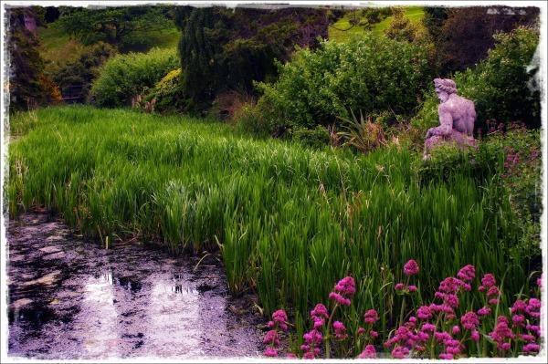 ireland, powerscourt gardens, landscaping, pond