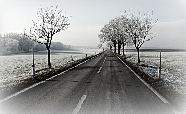 austria, winter, road, trees, field, frost