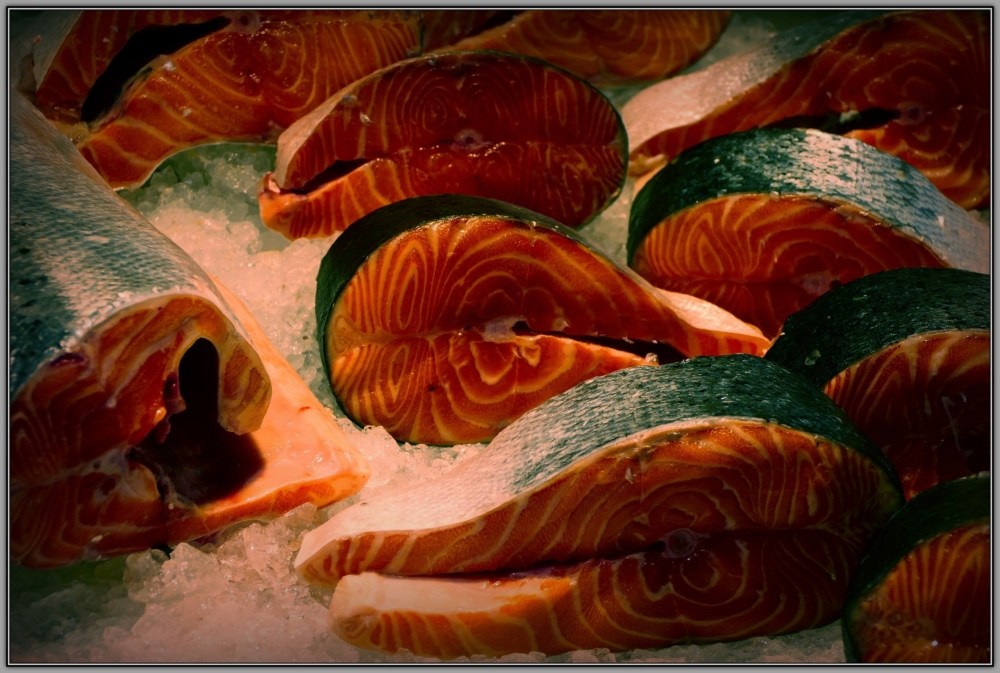 latvia, riga, fishmarket, salmon