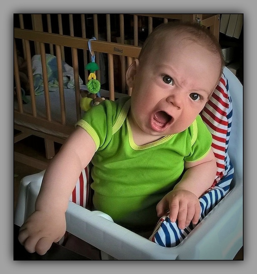 felix, grandson, nine months old