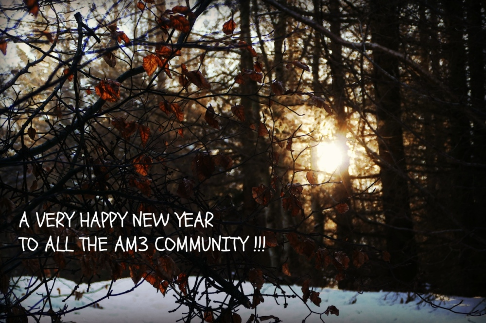new year, 2018, sunrise, trees, snow