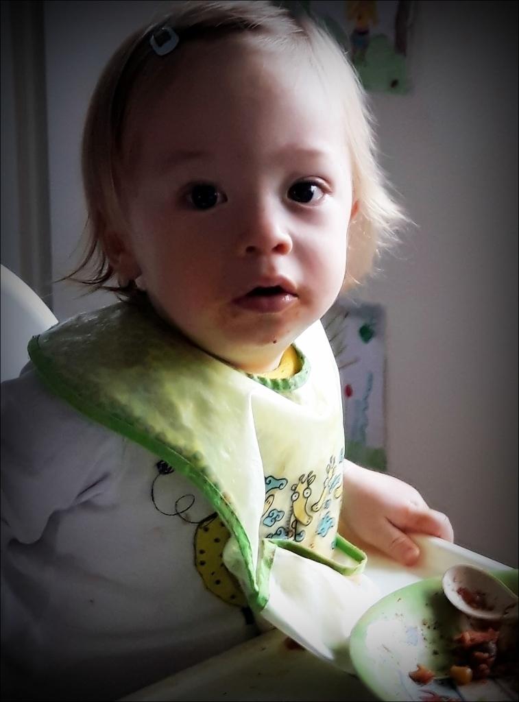 felix, grandson, sixteen months old, february 2018