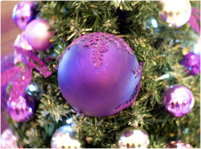 Christmas Greetings #4