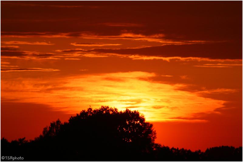 .....sunset.