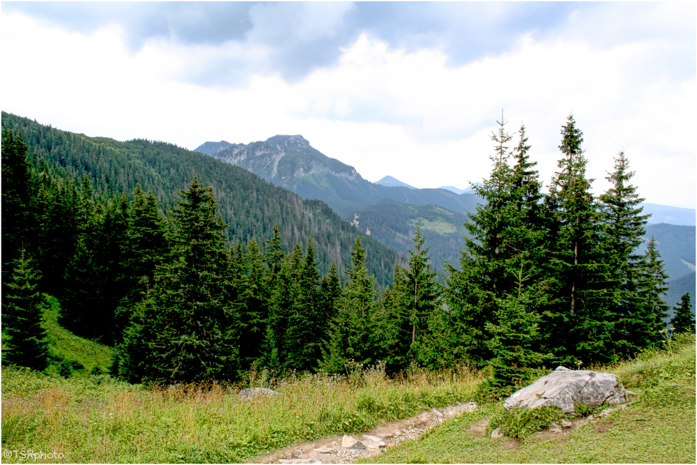 Walk through the mountains and forests.