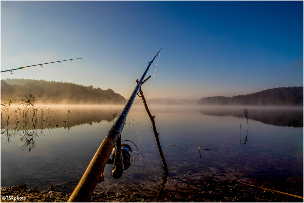Morning fishing