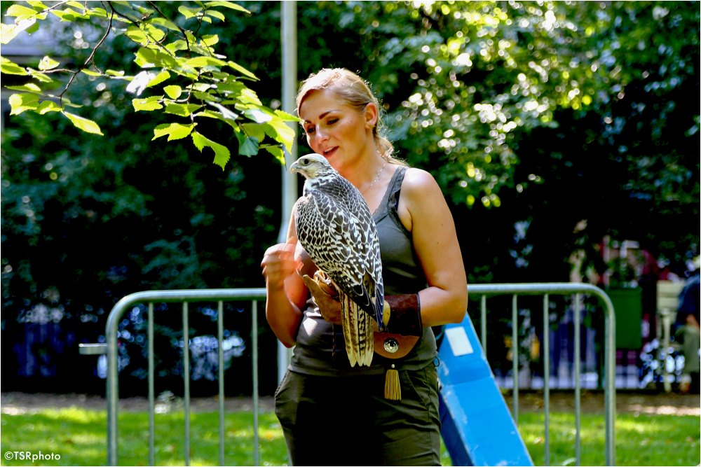 Woman with the Falcon
