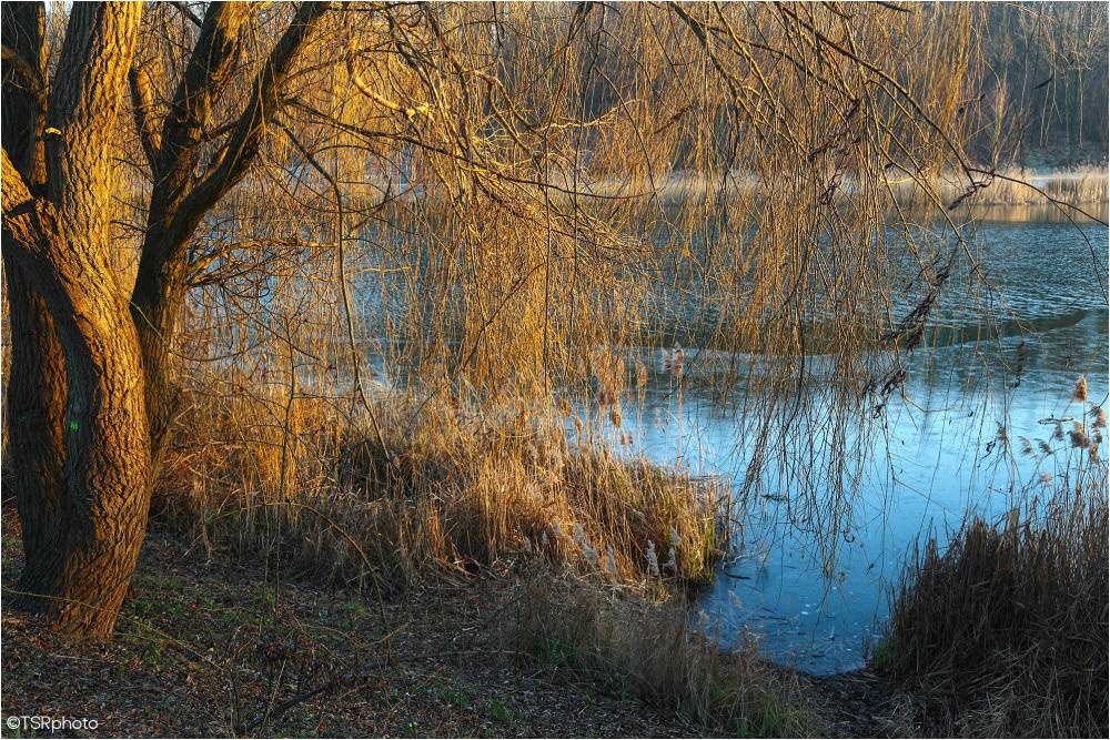 Lake N
