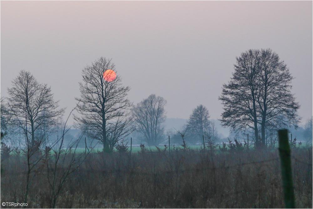 Foggy Sun 2