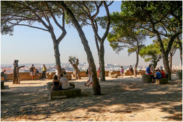 Watching Lisbon