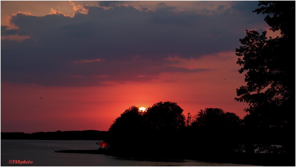 Sunset x