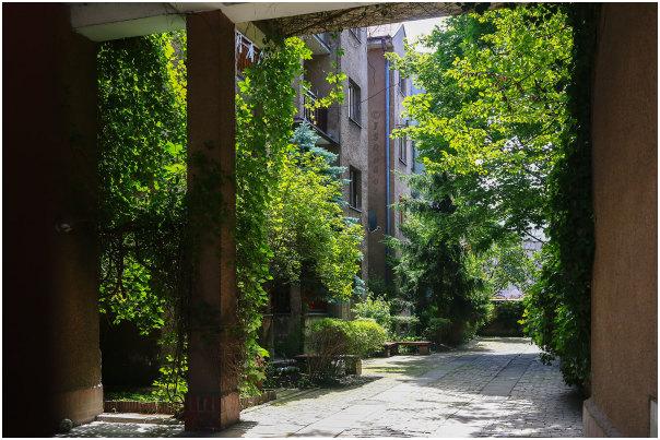 Greenyard