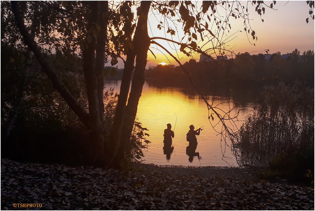 Evening Anglers