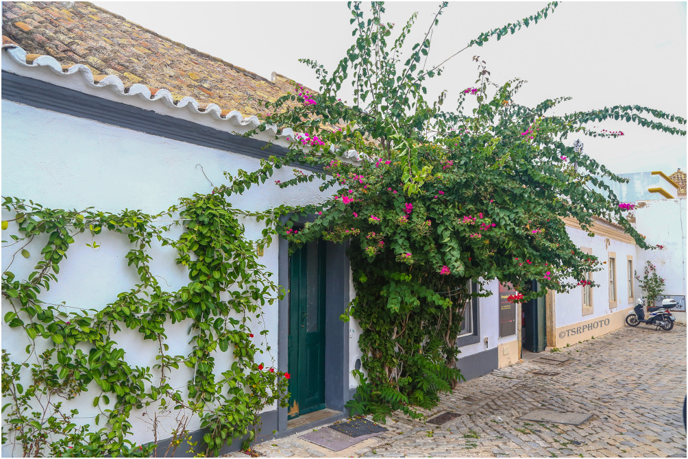 Streets of Faro 4