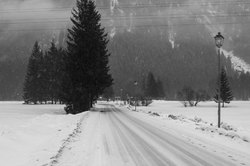 Still Winter 2