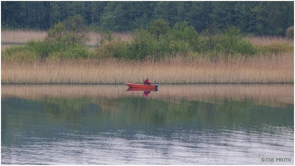lake forest angler boat