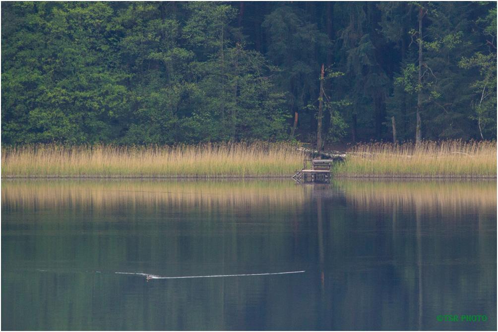 Angler platform