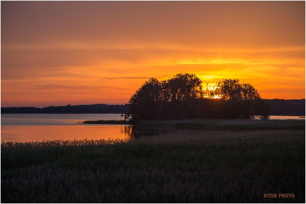 Cormorant Island in the Evening