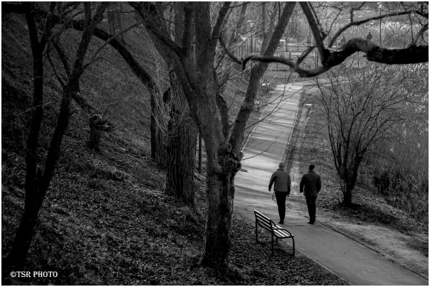 Two Man in Park