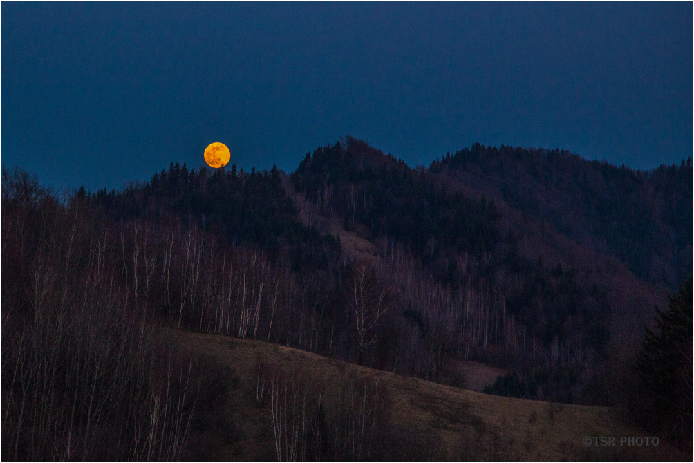 Moonlight in Obidza