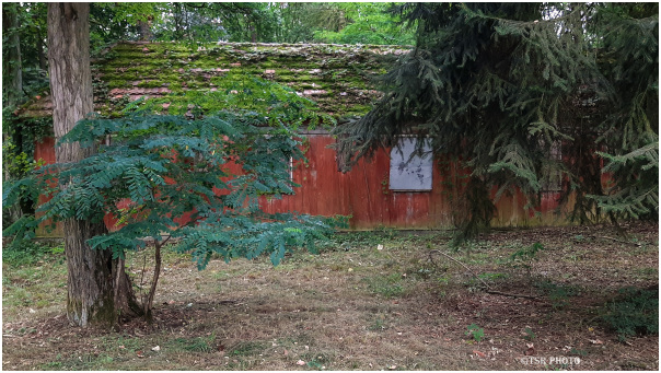 Hidden shed