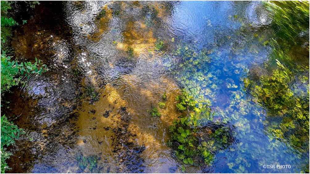 Wełna River 2